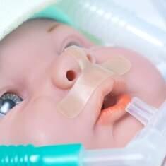 Baby Skin - Protetor de Septo Nasal M (cartela com 8 unid)